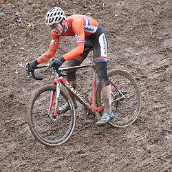 29-01-2017: Wielrennen: Wereldkampioenschap veldrijden: Luxemburg<br />BIELES (LUX) cyclocross  <br />David van der Poel