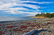 Shoreline at Chedabucto Bay , Fox Island, Nova Scotia, Canada