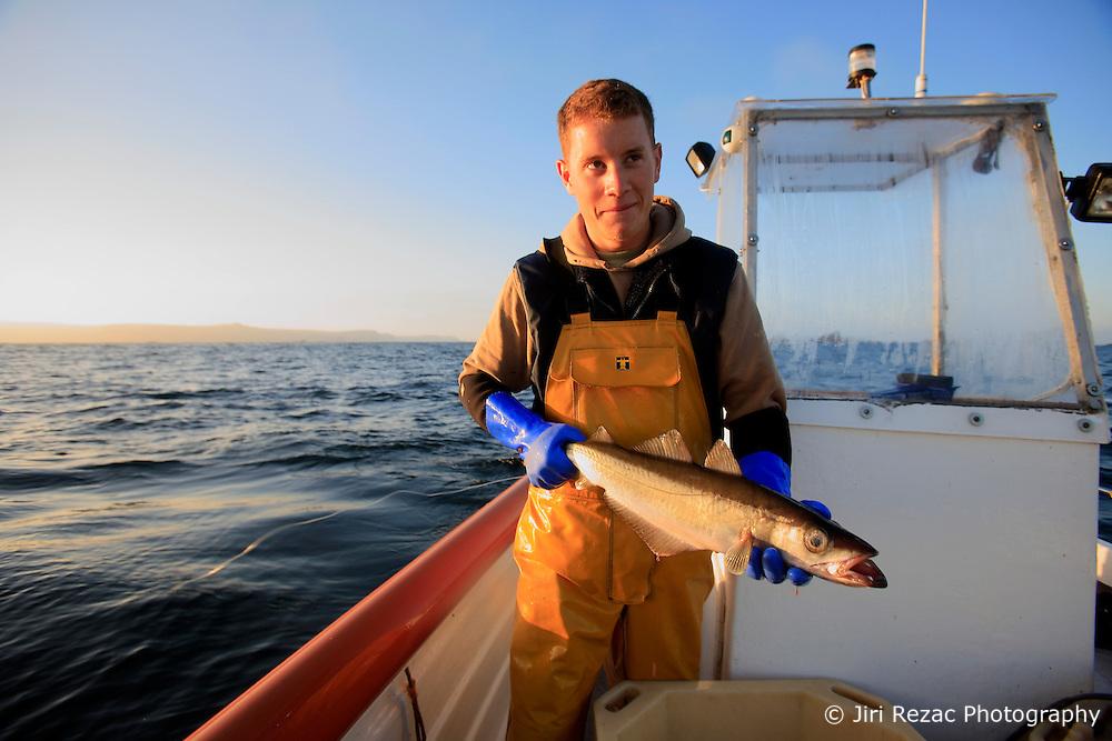 UK ENGLAND CORNWALL SENNEN COVE 11JUN08 - Handline fisherman Will Treneer (19) of Newlyn lands a Pollack off the coast of southwest Cornwall on his boat, the Cornish Rose...jre/Photo by Jiri Rezac / WWF UK..© Jiri Rezac 2008..Contact: +44 (0) 7050 110 417.Mobile:  +44 (0) 7801 337 683.Office:  +44 (0) 20 8968 9635..Email:   jiri@jirirezac.com.Web:    www.jirirezac.com..© All images Jiri Rezac 2008 - All rights reserved.