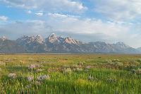 Antelope Flats, Grand Teton National Park