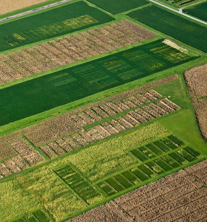 Aerial of farmed plots of land