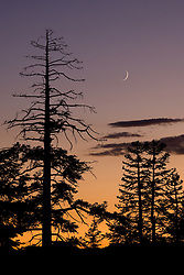 """Eerie Tahoe Sky""- This eerie Tahoe sky with a sliver of a moon was photographed at sunset near Martis Peak, Tahoe."