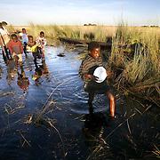 Zambia Food Crisis