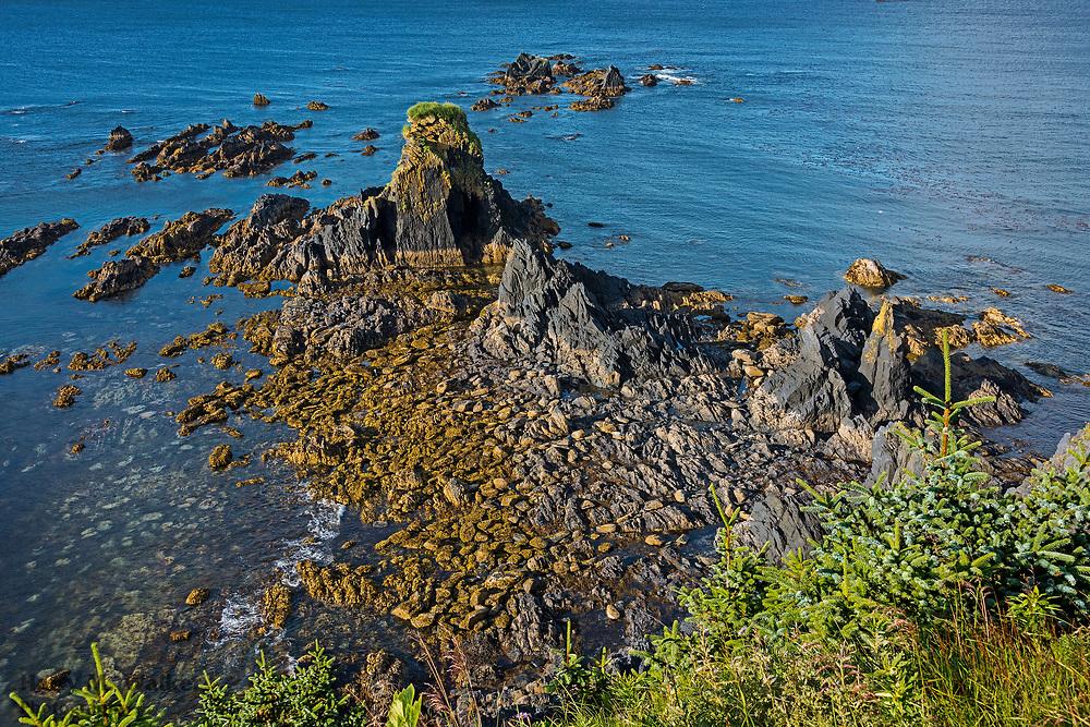 Miller Point; Fort Abercrombie State Historical Park; Kodiak Island; Alaska