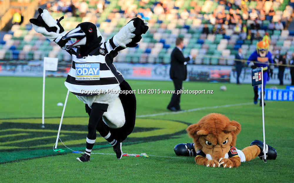 The Magpies mascot  beats the Lions mascot. Hawkes Bay v Wellington, ITM Cup Championship Final, McLean Park, Napier, New Zealand. Friday 23 October, 2015. Copyright photo: John Cowpland / www.photosport.nz