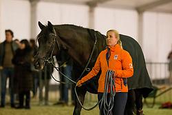 Heuitink Joyce, NED, Gaudi Vita<br /> Jumping Mechelen 2019<br /> © Hippo Foto - Sharon Vandeput<br /> 27/12/19