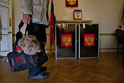© licensed to London News Pictures. London, UK 04/03/2012. A Russian citizen queueing to vote wih his dog in a bag at The Embassy of the Russian Federation in London as the election for the President of the Russian Federation takes place today (04/03/12). Photo credit: Tolga Akmen/LNP