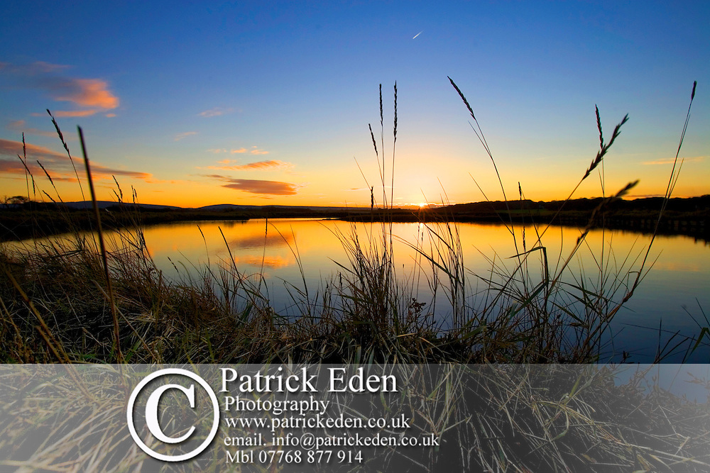 Newtown Nature Reserve Photographs of the Isle of Wight by photographer Patrick Eden photography photograph canvas canvases