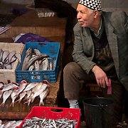 Fish monger at the souk in Fes, Morocco