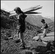 Alpine farming. Produktion von Glarner Schabziger auf der Alp Krauchtal; Rinderalp mit saisonalen Hirten im Heuloch, Gemeinde Matt, Glarus. © Romano P. Riedo