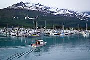 Valdez, Alaska. Nestled in the Chugach Mountains at the end of the Richardson Highway.