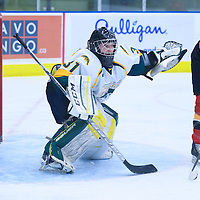 2nd year goalie Jane Kish (31) of the Regina Cougars in action during the Women's Hockey Home Game on November 26 at Co-operators arena. Credit: Arthur Ward/Arthur Images