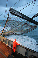 Dutch fishing vessel fishing on the Northies for sole and flounder