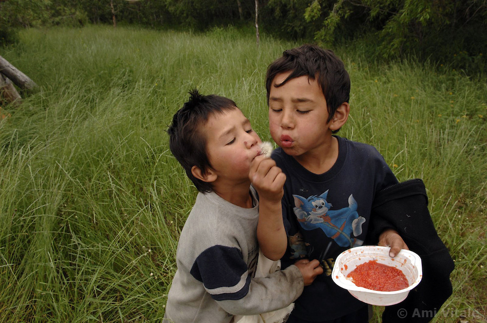 great grandchildren, Akuguk Denis Renatovich  (9) and Akuguk Danil Renatovich  (6) play near a lake after helping   collect salmon that they filet and dry at their summer fishing camp along the river Vyvenka in Khailino, Kamchatka July 15, 2007. Most indigenous people rely on the salmon harvested in the summer for the whole year. They dry it and feed it to themselves and their dogs that they use to get around on sleds in the harsh winter months. Because the area is so remote and no longer subsidized by the Russian or Soviet government of the past goods and gasoline are extremely expensive. The economy is struggling and the only way for most people to survive is through poaching and fishing in the short summer months. So now the fish population is rapidly declining as poachers collect the eggs and don't allow the salmon to spawn for the next generations. The family name is Akuguk and the elder man is Akuguk Roman Cholkovich (74), his wife Raisa Romanovna (79), their son Yuri Romanovich  (47) with mustach, Tnakovav Viktoria Mikhailovna (38) - niece, <br />  Tankai Valeri Panteleevich (44) - husband of the daughter with beard and<br /> great grandchildren, Akuguk Denis Renatovich  (9) and Akuguk Danil Renatovich  (6)