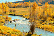 Fly fishing the Provo River below Jordanelle Dam, outside of Heber City, Utah.