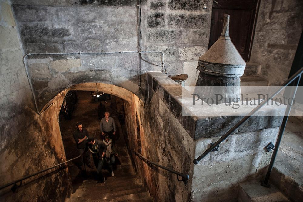 Il Palazzo Ducale di Scorrano nasce da un&rsquo;antica fortificazione. Fu Angioina fino al 1399, poi del Principe di Taranto Giovanni Antonio Orsini Del Balzo, nel 1463 divenne Aragonese e ospit&ograve; una discreta guarnigione che fu impegnata anche nella liberazione di Otranto(1481). <br /> Dal 1686 Scorrano con il castello fu di pertinenza della famiglia Frisari,che lo acquist&ograve; con il titolo di Duca, trasformandolo nella forma attuale. Nel 1894 Donna Teresa, ultima Frisari, port&ograve; il titolo e il palazzo nella famiglia Guarini avendo sposato Don Carlo Guarini duca di Poggiardo. Giovan Battista Guarini rappresenta la quarta generazione che possiede e risiede nel Palazzo di Scorrano. I Guarini sono una famiglia di origine normanna,scesi in Puglia durante la conquista del Sud sin dal 1040. Hanno avuto numerosi feudi tra i quali:SanCesario,Alessano,Surano,Acquarica,Caprarica,Poggiardo,Ortelle,Scorrano. Hanno offerto i loro servigi ai vari Re ricevendone ricompense, dato numerosi sindaci alla citt&agrave; di Lecce,e molti figli e figlie alla chiesa.<br /> Il Giardino Storico<br /> Il giardino di 5000 mq su cui si affaccia l&rsquo;ala interna di Palazzo Guarini,ha un impianto ottocentesco, con la particolarit&agrave; tutta salentina delle aiuole disegnate con pietre informi legate tra loro con malta e pezzi di coccio. L'apice di questo insieme inconsueto &egrave; la fontana, che rappresenta una grotta con un mascherone di pietra da cui sgorga l&rsquo;acqua che, scendendo lungo una cascatella di pietre, si riversa in una vasca circolare decorata a motivi ornamentali disegnati con cocci e vetri policromi,bauxite, pietre laviche e conchiglie fossili.<br /> Nel giardino vivono piante antiche,alcune inconsuete e rare,alberi da frutta esotici e agrumi dai frutti giganti. Le aiuole hanno bordure di piante aromatiche e sono fiorite in tutte le stagioni. In questo contesto una vecchia vasca di raccolta dell&rsquo;acqua &egrave; stata trasformata in una piacevole pis