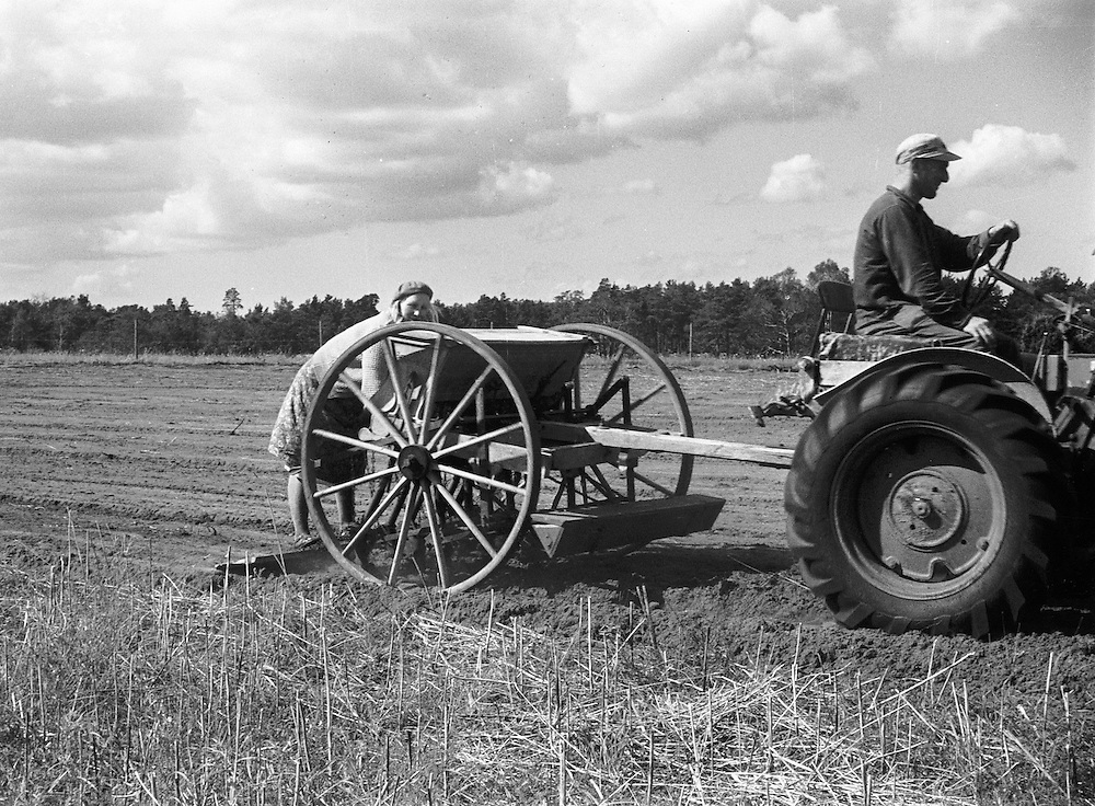 1960 | Sådd med traktor och såningsmaskin