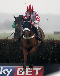 Red Infantry ridden by Robert Dunne jumps the last to win The Sky Bet Top Price Promise Steeple Chase at Doncaster Racecourse.
