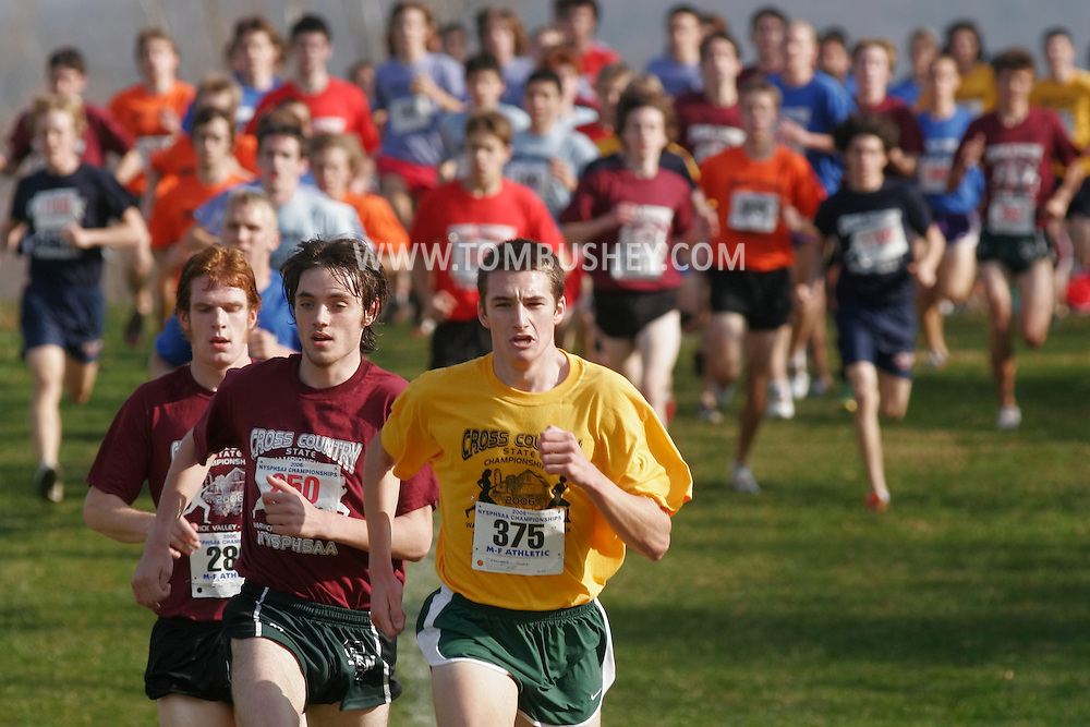 Warwick, N.Y. - Tommy Gruenewald (375) of Fayetteville-Manlius leads the Class AA boys' race at the New York State Public High School Athletic Association cross country championships at Sanfordville Elementary School on Nov. 11, 2006.<br />