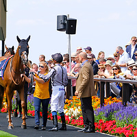 Newmarket 4th August