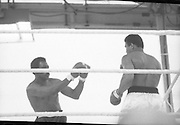 Ali vs Lewis Fight, Croke Park,Dublin..1972..19.07.1972..07.19.1972..19th July 1972..As part of his built up for a World Championship attempt against the current champion, 'Smokin' Joe Frazier,Muhammad Ali fought Al 'Blue' Lewis at Croke Park,Dublin,Ireland. Muhammad Ali won the fight with a TKO when the fight was stopped in the eleventh round...Image of Lewis as he prepares to parry a right from Ali.