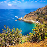 Catalina Island Lover's Cove picture in Avalon California