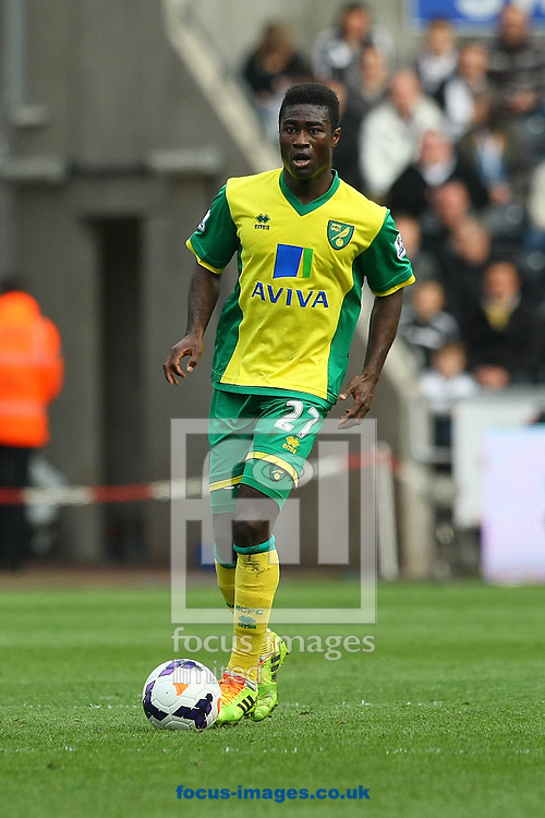 Alexander Tettey of Norwich in action during the Barclays Premier League match at the Liberty Stadium, Swansea<br /> Picture by Paul Chesterton/Focus Images Ltd +44 7904 640267<br /> 29/03/2014