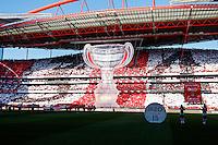 Tifo supporters Benfica - 23.05.2015 - Benfica / Maritimo - Liga Sagres <br /> Photo : Carlos Rodriguez / Icon Sport