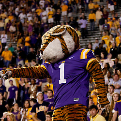 November 10, 2012; Baton Rouge, LA, USA;  LSU Tigers mascot Mike the Tiger during the second half of a game against the Mississippi State Bulldogs at Tiger Stadium.  LSU defeated Mississippi State 37-17. Mandatory Credit: Derick E. Hingle-US PRESSWIRE