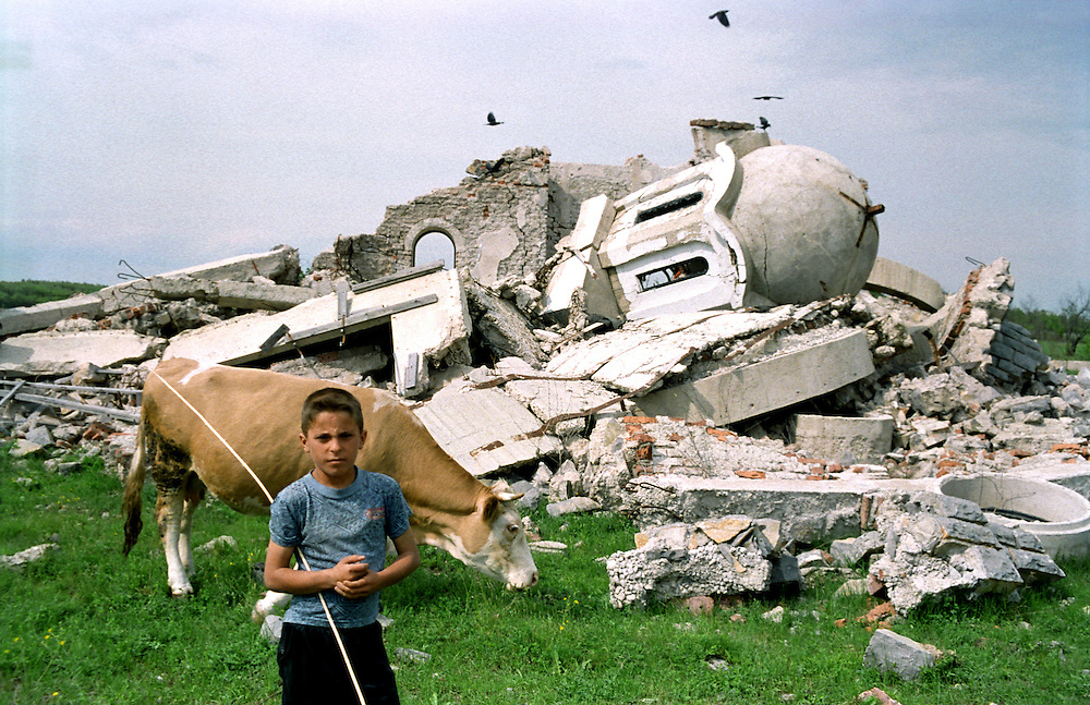 Albanian boy graces his cows around the completely destroyed church in Petric. The village itself is also abandoned and burned. Close to Pec. Petric, Kosovo...Serbs living in enclaves in Kosovo.