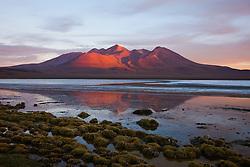 Sunset on the mountain behind Laguna Canapa, Laguna Canapa, Bolivia,South America