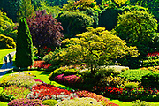 Sunken Gardens, Butchart Gardens. Victoria Canada