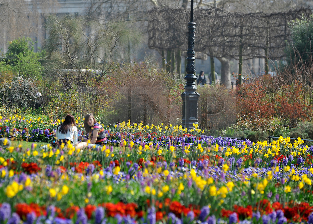 © Licensed to London News Pictures. 24/03/2012. London, UK. Two girls sit amongst a colourful flower display. People enjoy the warm sunshine today 24 March 2012 in Hyde Park Central London . Photo credit : Stephen SImpson/LNP