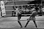 Thai Boxing 2008-12