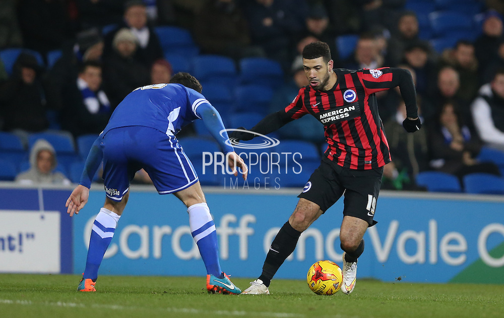 Leon Best, Brighton striker during the Sky Bet Championship match between Cardiff City and Brighton and Hove Albion at the Cardiff City Stadium, Cardiff, Wales on 10 February 2015.