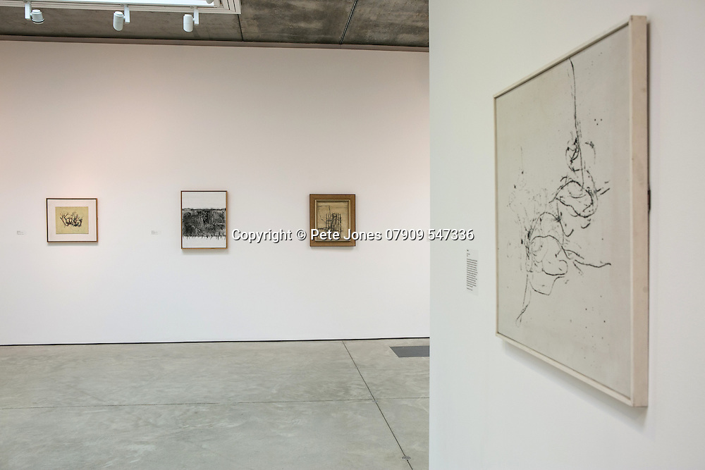 Prunella Clough: Unknown Countries PV;<br /> Jerwood Gallery;<br /> Hastings. East Sussex.<br /> 22nd April 2016.<br /> <br /> &copy; Pete Jones<br /> pete@pjproductions.co.uk
