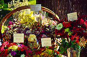 Idaho, Sandpoint. Farmers Market. Flowers at Sandpoint Farmer's Market.