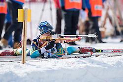 LIASHENKO Liudmyla, UKR, Biathlon Pursuit, 2015 IPC Nordic and Biathlon World Cup Finals, Surnadal, Norway