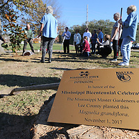 A palque waits to installed after the Lee County Master gardners finish planting a Magnolia tree in honor of Mississippi's Bicentennial that is being celebrated this year.