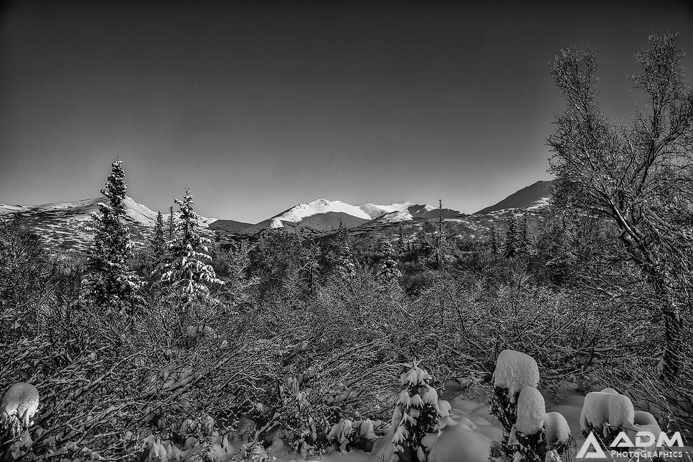 Winter in the Chugach Mountains east of Anchorage, winter, afternoon