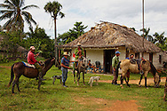 Cowboys and horses in front of a thatched house in the San Ramon area, Pinar del Rio Province, Cuba.