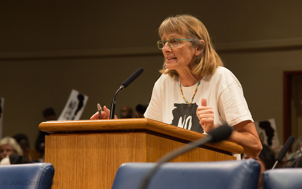 Renate Heurich with 350 New Orleans, addresses the New Orleans City Council before the vote on Entergy's gas plant speaking against the project. The city voted to approve Entergy's project despite a lot of opposition. The City Council is now facing lawsuits over its decision.