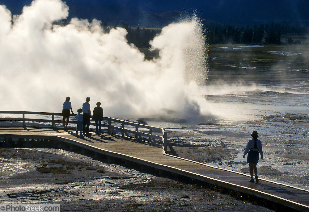 A geyser erupts on Fountain Paint Pot trail, Yellowstone National Park, Wyoming, USA. Yellowstone was the first national park in the world (1872), and UNESCO honored it as a World Heritage site in 1978.