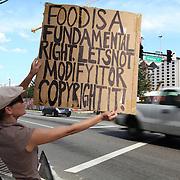 Monsanto Protest Orlando GMO