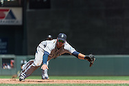 Alex Liddi #16 of the Seattle Mariners made a diving attempt to stop a ground ball that hit the 1st base bag during a game against the Minnesota Twins on June 2, 2013 at Target Field in Minneapolis, Minnesota. Aaron Hicks #32 of the Minnesota Twins (not shown) ended up with a triple on the play.  The Twins defeated the Mariners 10 to 0.  Photo: Ben Krause