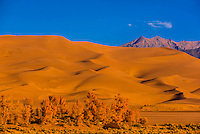 Great Sand Dunes National Park and Preserve, near Mosca, Colorado USA. The park contains the tallest sand dunes in North America, rising about 750 feet above the floor of the San Luis Valley.