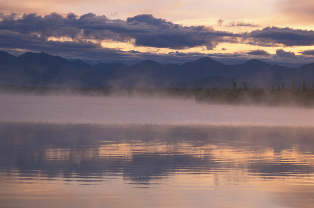 Morning Mist near Hains Junction, Yukon, Canada