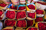 Bunches of red roses tightly packed in cardboard for sale in the Ho Thi Ky flower market in Ho Chi Minh City, Vietnam, Southeast Asia