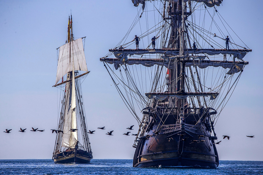 Canada Geese buzz the Tall ships El Galeon and Pride of Baltimore as they arrive in Toronto.