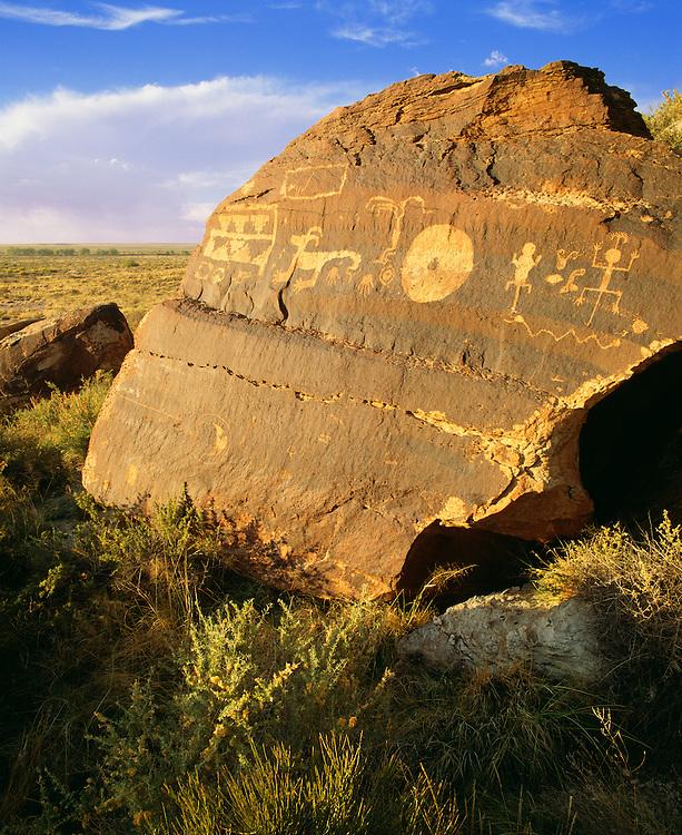 0113-1009B ~ Copyright: George H. H. Huey ~  Anasazi culture petroglyphs, on boulder with desert varnish. Petrified Forest National Park, Arizona.